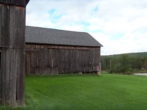 hcl_pic03_barn_canadice_coykendall_ward_2011_resize480