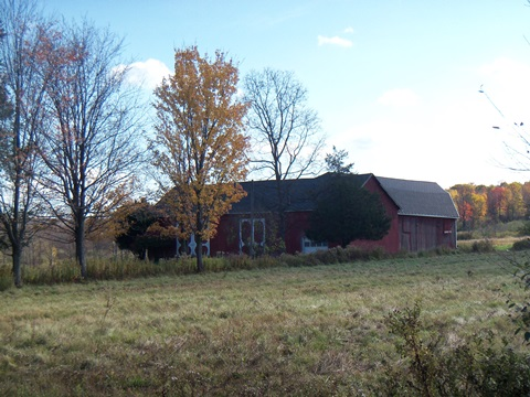 hcl_pic05_barn_canadice_coykendall_ward_2011_resize480