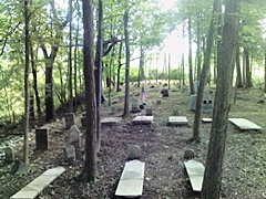 hcl_cemetery_canadice_bald_hill_resize240
