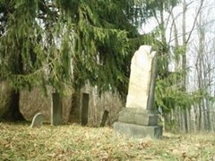 hcl_cemetery_canadice_hollow_resize240