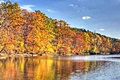 hcl_column_crothers_angela_nature_in_the_little_finger_lakes_2015_10_twelve_things_october_120x80
