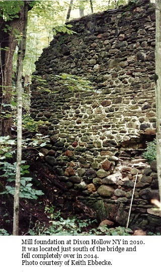 hcl_pic13_community_dixon_hollow_adams_mill_remains_c2010_resize320x466
