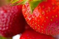 hcl_farm_and_garden_fruit_strawberry_the_quality_of_a_strawberry_120x80