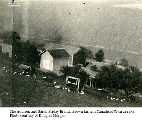 hcl_homestead_canadice_brown_addison_c18xx_pic01_resize480x364
