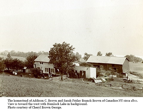 hcl_homestead_canadice_brown_addison_c18xx_pic02_resize480x325