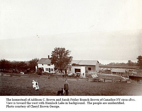 hcl_homestead_canadice_brown_addison_c18xx_pic03_resize480x323