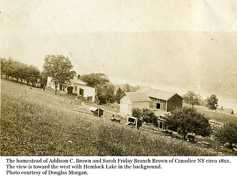 hcl_homestead_canadice_brown_addison_c18xx_pic04_resize480x316