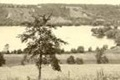 hcl_reservoir__index_history_brief_120x80