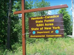 hcl_state_forest_sign2_ro030